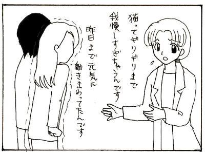 89-11.jpg