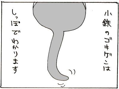 96-1.jpg