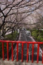 桜坂1-2