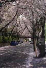桜坂1-3