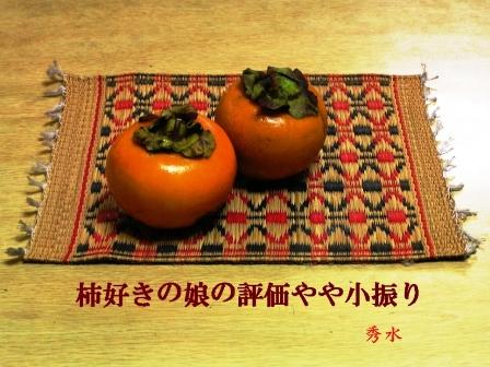 柿好き写真SD