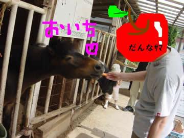 愛知県日進市 愛知牧場