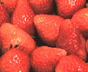 strawberries.jpg