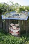 g~acoco4