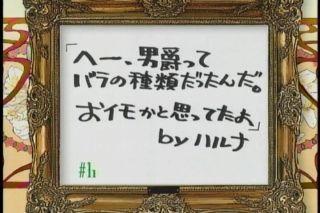 negi11-0.jpg