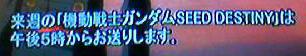 050731_0606~001.jpg