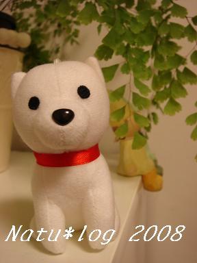 2008ブログ 093