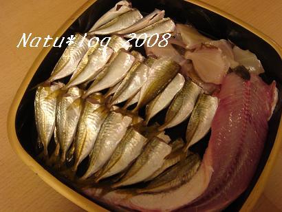 2008ブログ 123