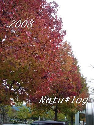 2008ブログ 131