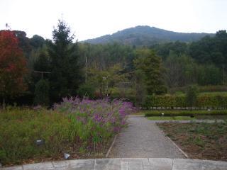 みかも山公園-4