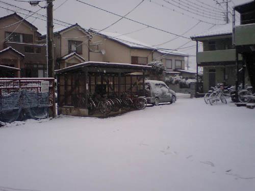 イイ雪原www