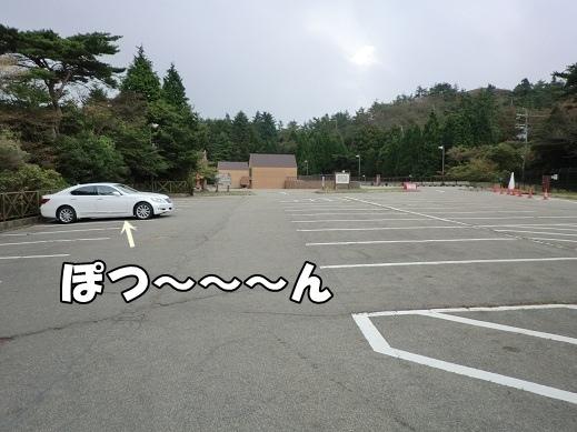 CIMG3561.jpg