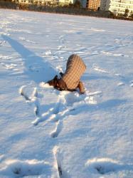 雪好き~~~!!