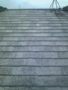 洗浄後屋根-南側