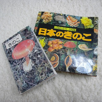 """きのこの世界・・・森のおくりびと。01菌類の招待状、ハンドブック""""きのこ""""とデラックスな""""日本のきのこ"""""""