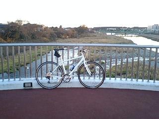 自転車専用