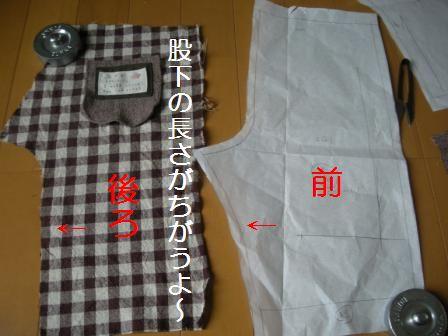 DSCN2442_20090801224158.jpg