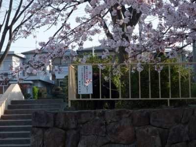 2009_0410kouen0003.jpg
