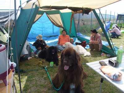 2009_0414sakaiBBQ0029.jpg