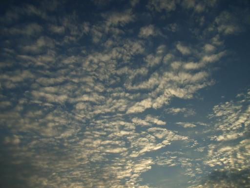 SkyDay91.jpg