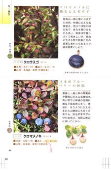 090514kousei.jpg