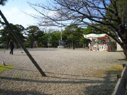 shirohiroba.jpg