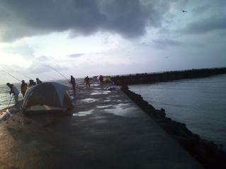 H20.10.11-白老漁港鮭釣風景