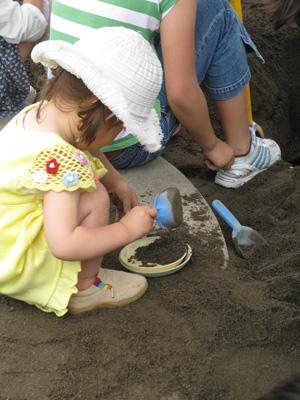 sandbox2090613.jpg