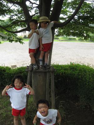 tree3090626.jpg