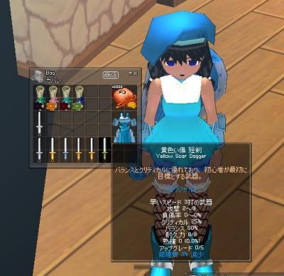 mabinogi_2007_02_07_003.jpg