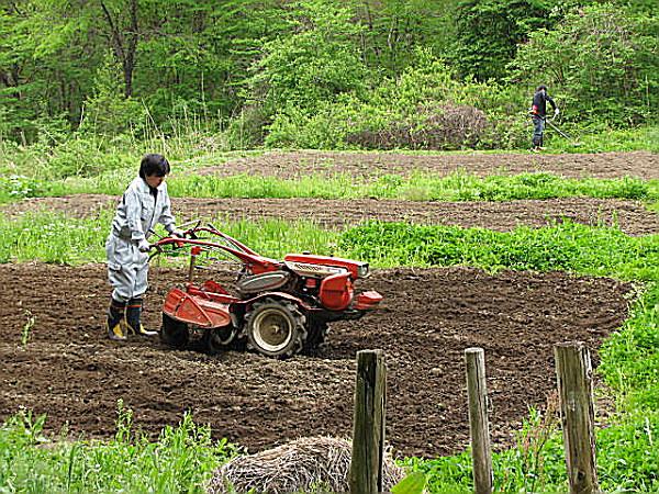 農作業開始