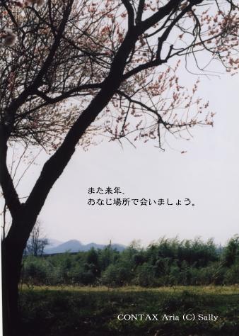 0603269.jpg