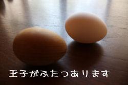 IMG_2990.jpg