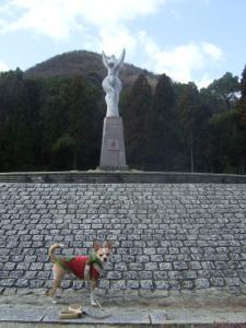 2009_0312甲山森林公園0011