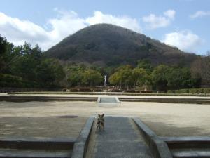 2009_0312甲山森林公園0008