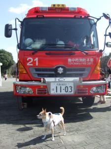 2009_03073月服部緑地0008