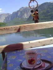 ハルシュタットの湖の前でお茶