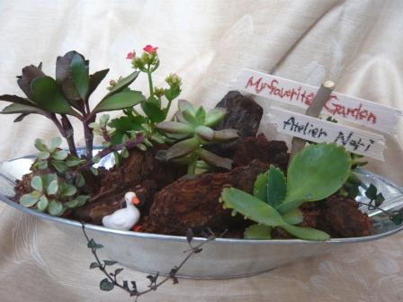 2009.7多肉植物の寄せ植え