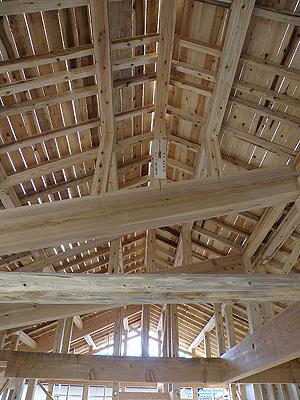 屋根見上げ