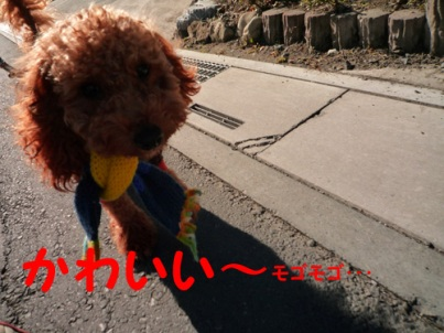 P1010277_edited-1.jpg