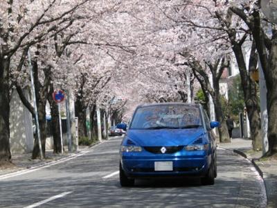 s-haru04_1.jpg