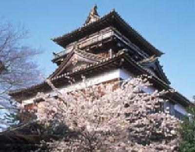 桜の丸岡城