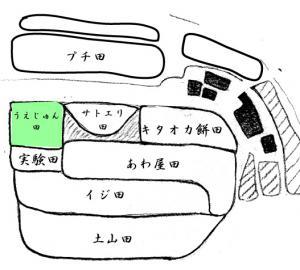 uejyun.jpg