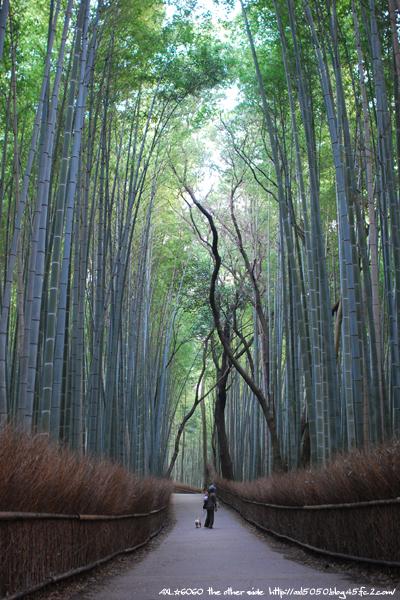 arashiyama004