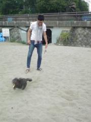 Beauty dog 011