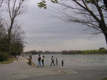20070331230832.jpg