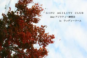 2008-10-11-898360.jpg