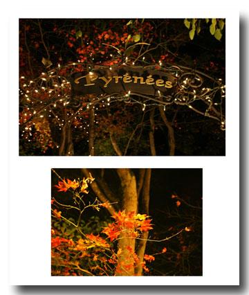 2008-10-18-1.jpg