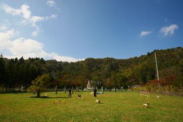 2008-10-19-222360.jpg