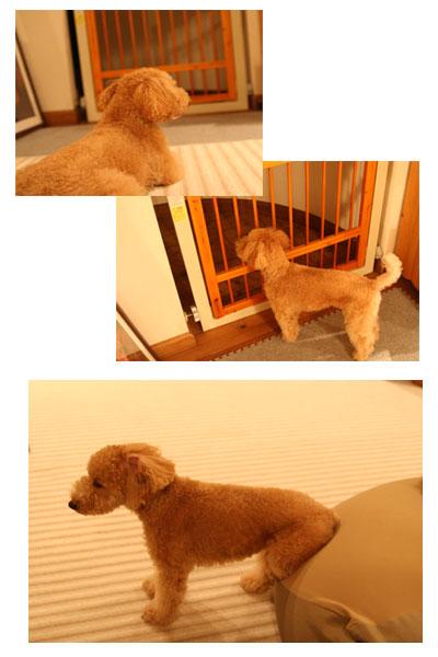 2008-10-30-1.jpg